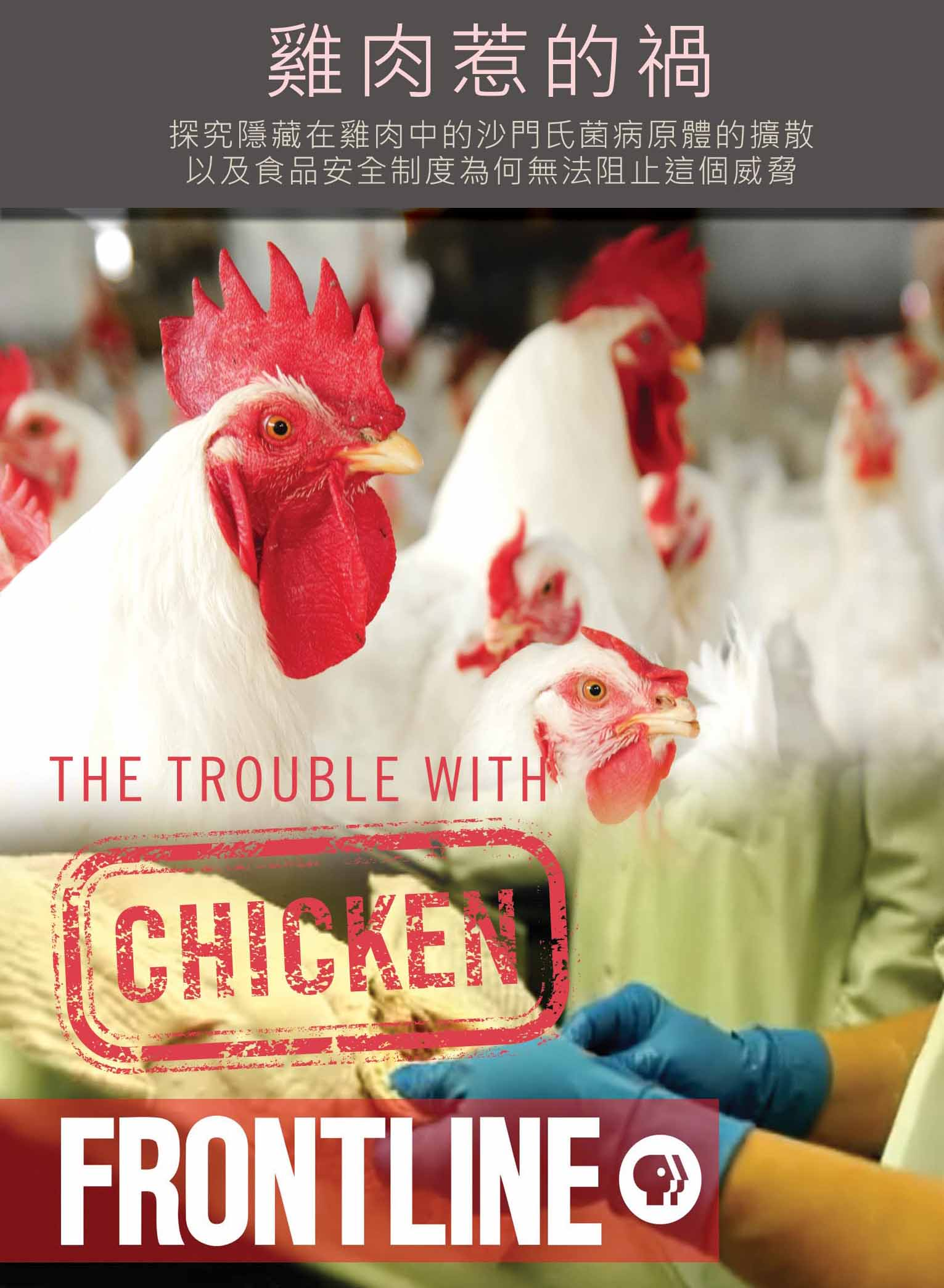 The trouble with chicken